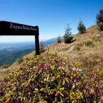 MICE-green-cti-oasi-zegna-turismo