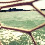venezia-barca-evento-rete